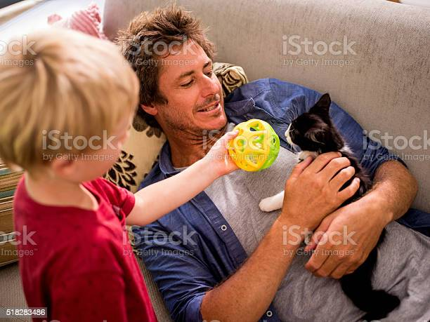 Modern dad holding cat for son to play on couch picture id518283486?b=1&k=6&m=518283486&s=612x612&h=dmlvyl9cil6unghf qadjuq45jx1rrd54vy9yimhpji=