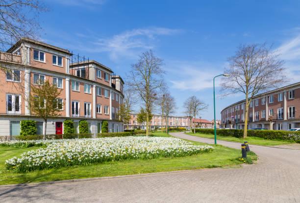 Moderne Hollandse huizen foto