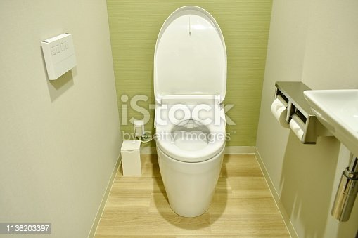 modern electric toilet and control pad on wooden wall in water closet