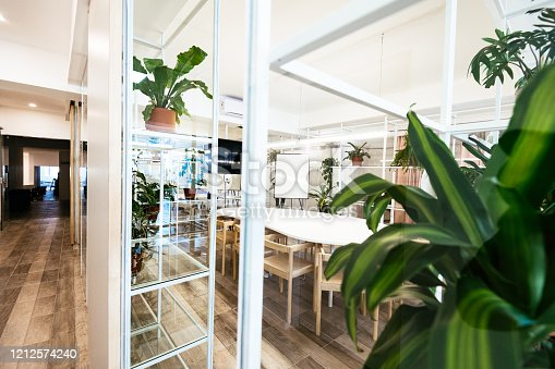Modern eco-friendly office with plants and recycled non-plastic materials