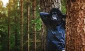 Modern evoluted gorilla do things