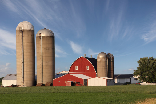 Rural scene showing a modern family farm with a bright red barn surrounded by silos and set between a green farm field and dramatic blue sky.  Wispy clouds provide depth to the image and draw the viewer's eye to the red barn.  The sky also provides text space if needed.