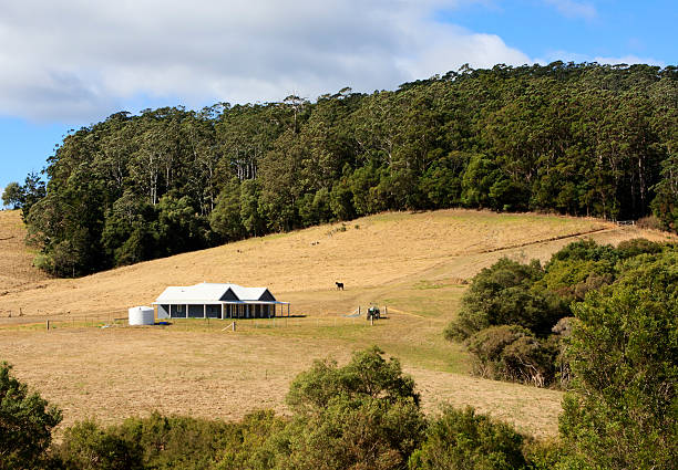 Modern farm house on hill side with trees surrounding it stock photo