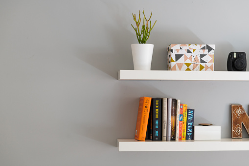 A section of two white painted modern bookshelves with books, a plant and a decorative storage box.
