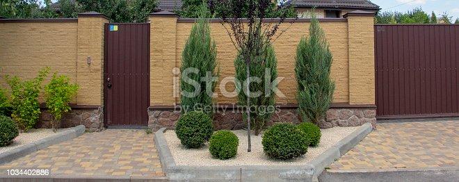 istock Modern garden design Coniferous plants in the garden 1034402886