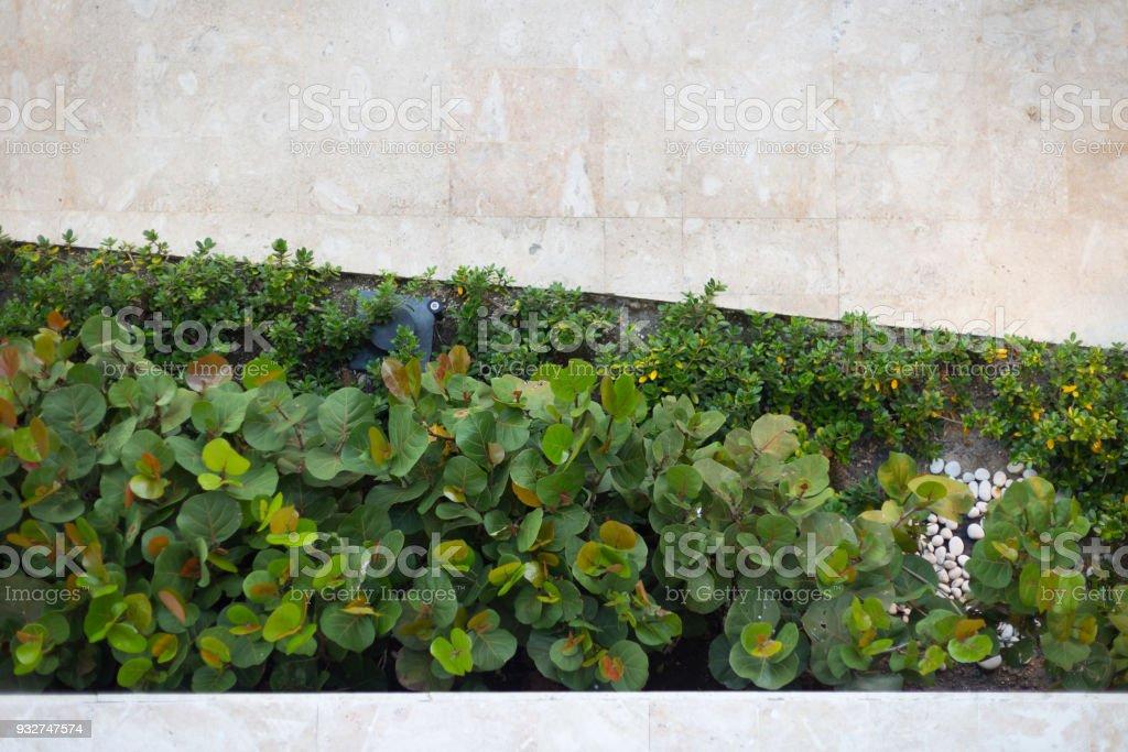 Photo libre de droit de Jardin Moderne Vue De Dessus banque ...
