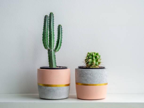 moderne geometrische betonnen plantenbak. mooie betonnen pot. - bloempot stockfoto's en -beelden