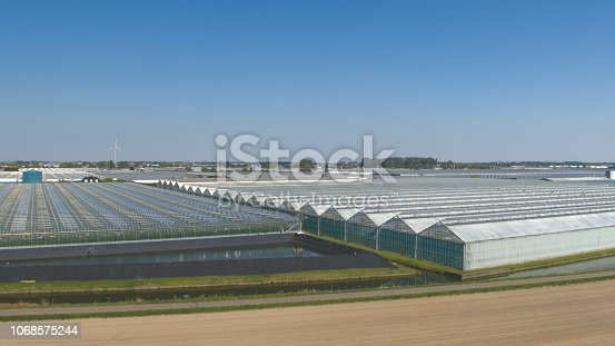 AERIAL: Flying above vast modern plantation of stunning glass greenhouses on sunny spring day. Organic cultivation of vegetables, greenery and plants in hothouses next to big agricultural suburb town
