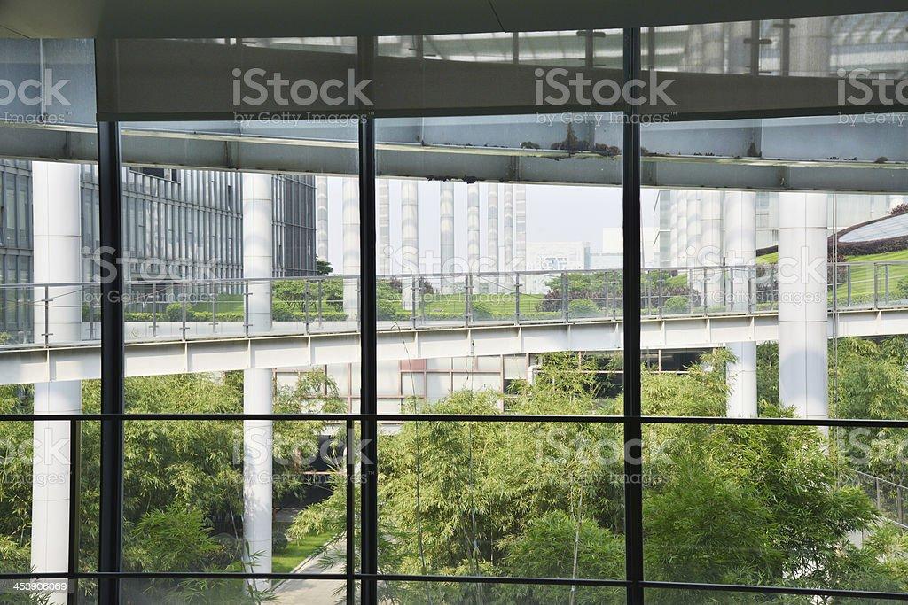 Modern office building with flourish green garden thurogh window view.