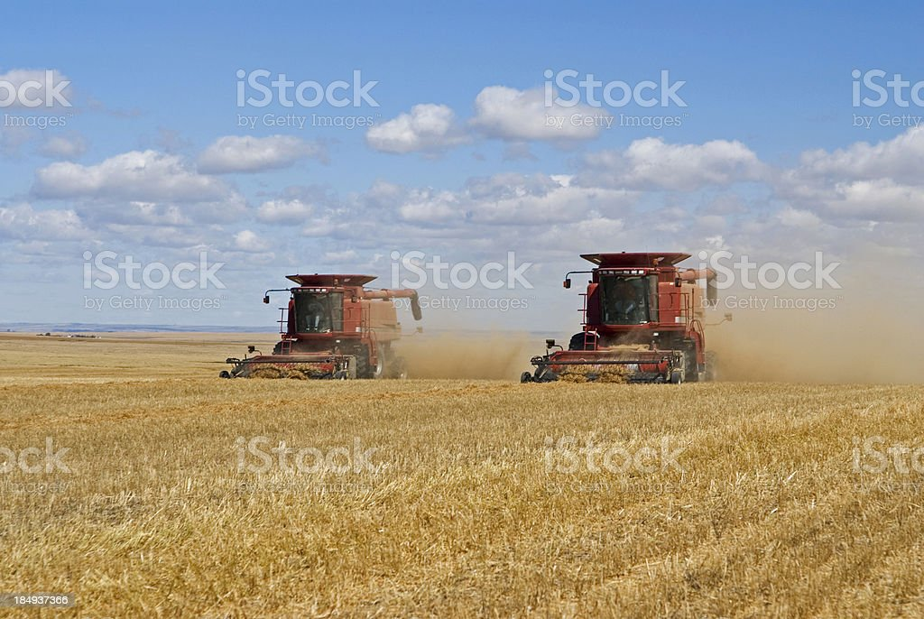 Modern Harvesting royalty-free stock photo