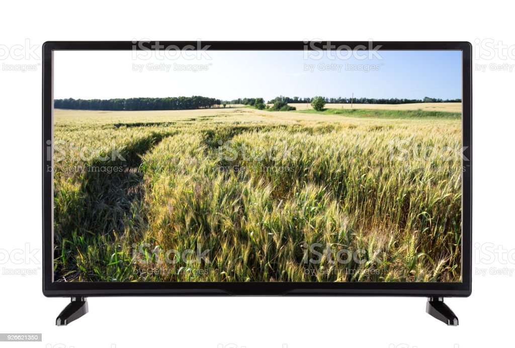 Modern Highdefinition Tv With Field Of Green Ears On The