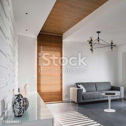 istock Modern home interior with sofa 1163488051