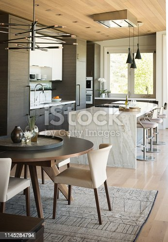 Modern Home Kitchen and Dinning Room