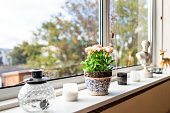 istock Modern house living room kitchen window decorations decor with candles, glass teapot, flowerpot flowers and sunlight, green plant staging home interior 1081697146