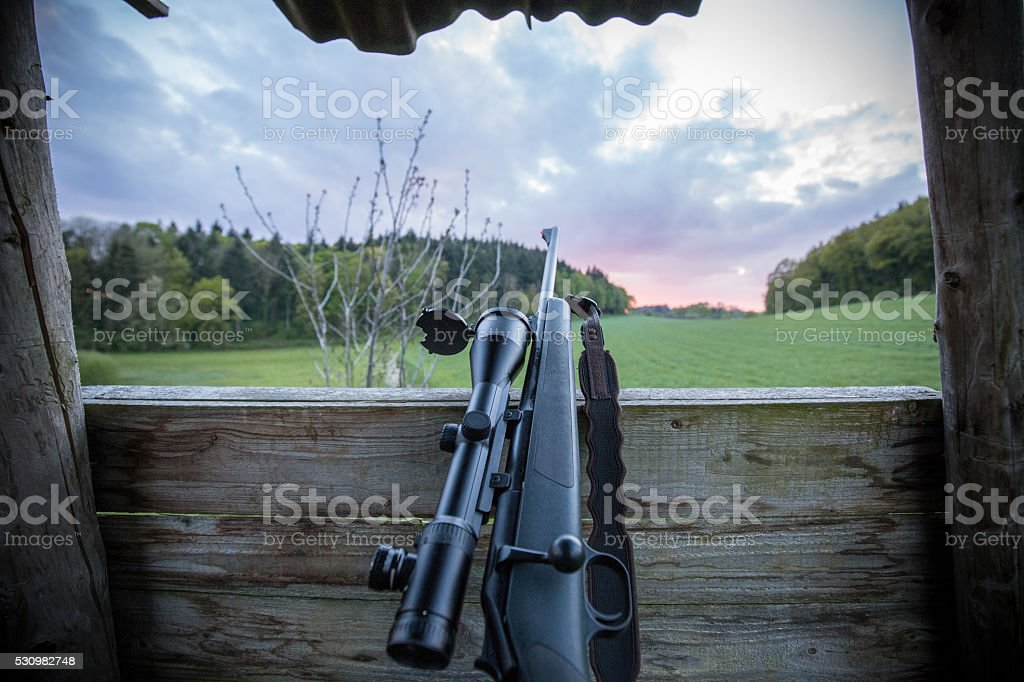 Modern hunting rifle with scope stock photo