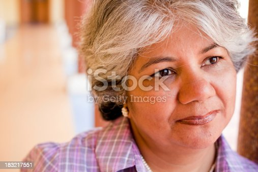 istock Modern Indian Confident Attractive Mid Aged Business Woman 183217551