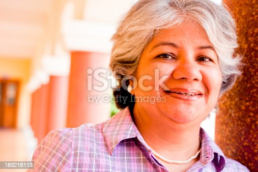 istock Modern Indian Confident Attractive Mid Aged Business Woman 183218113