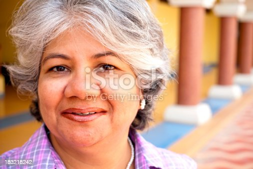 istock Modern Indian Confident Attractive Mid Aged Business Woman 183218242