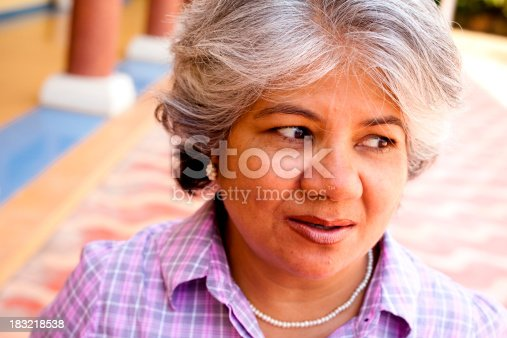 istock Modern Indian Confident Attractive Mid Aged Business Woman 183218538