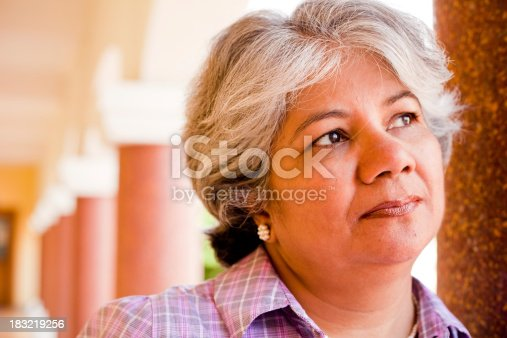 istock Modern Indian Confident Attractive Mid Aged Business Woman 183219256