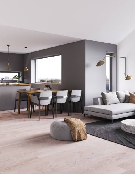 modern interior apartment. - nelleg stock photos and pictures
