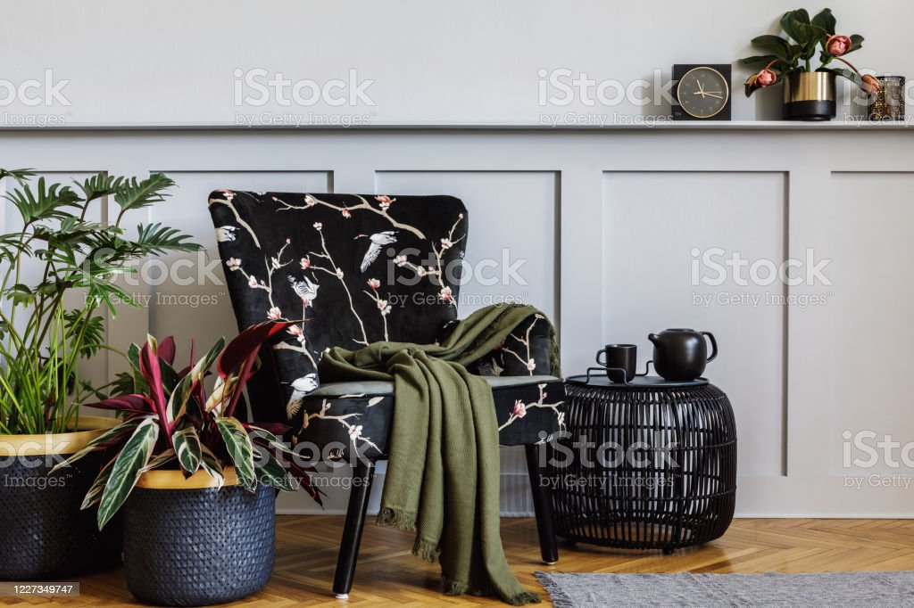 Modern Interior Of Living Room With Design Armchair Wood Paneling With Shelf A Lot Of Plants Coffee Table Grey Wall Decpration Carpet And Persnoal Accessories In Home Decor Stock Photo Download