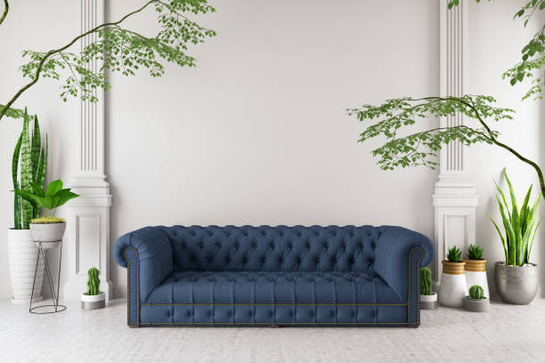 Modern interior Sofa with Green Plants stock photo