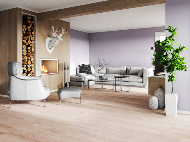 modern interior with fireplace - nelleg stock photos and pictures