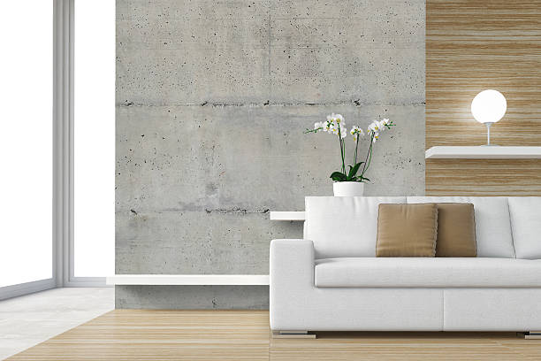 intérieur moderne avec canapé blanc - architecture intérieure beton photos et images de collection