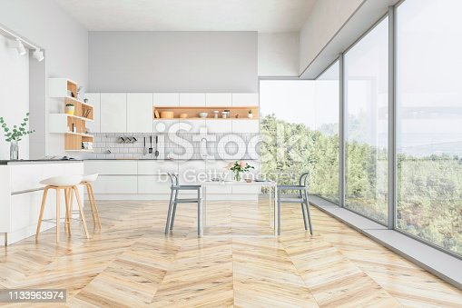 Modern kitchen and kitchen interior with nature view