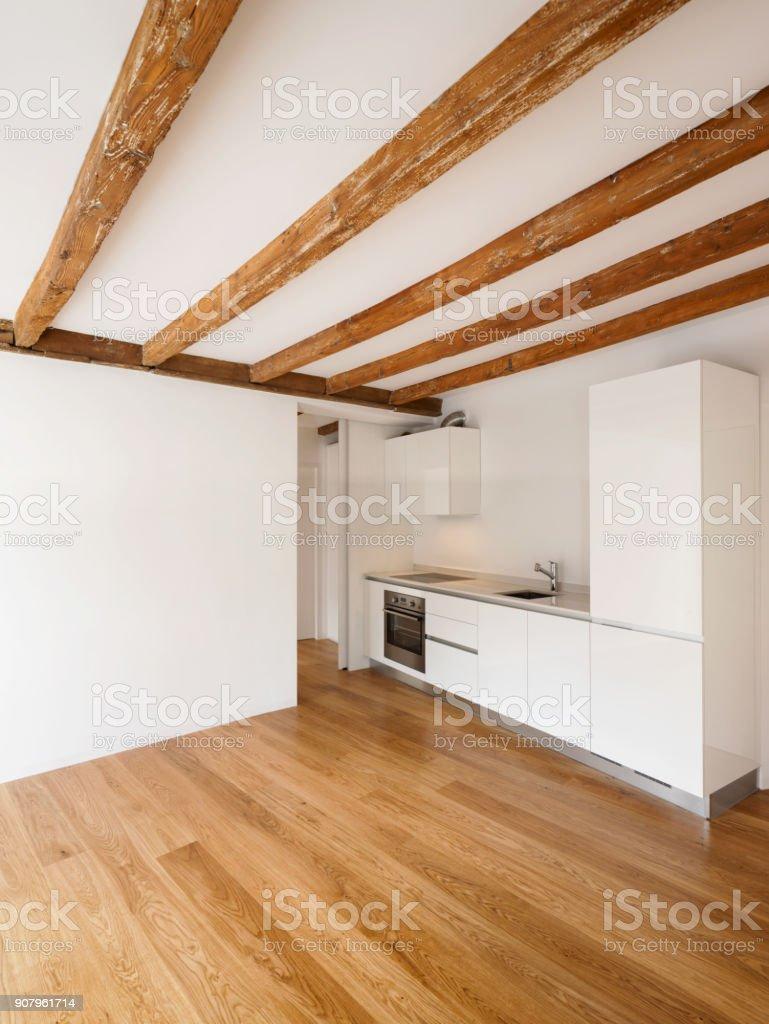 Moderne Küche in renovierte Wohnung – Foto