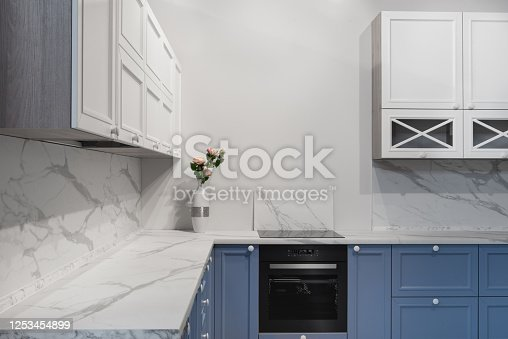 665910118 istock photo Modern kitchen room interior with furniture and counter for concept design - light home background 1253454899