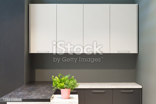 665910118 istock photo Modern kitchen room interior with furniture and flowers on counter for concept design - light home background 1253456858