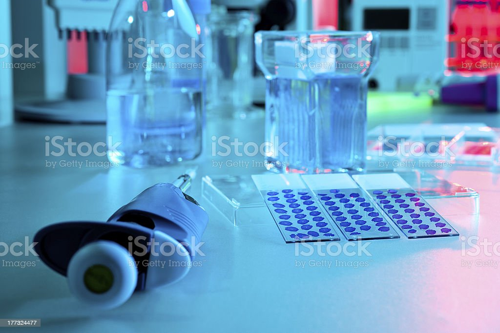 Modern lab, histochemical experiment stock photo
