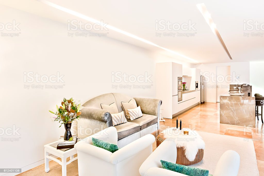 Modern Living Area Beside The Kitchen Interior Of A House