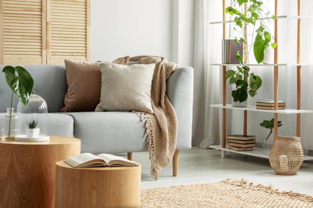 modernes wohnzimmer im natürlichen, botanischen stil - behaglich stock-fotos und bilder