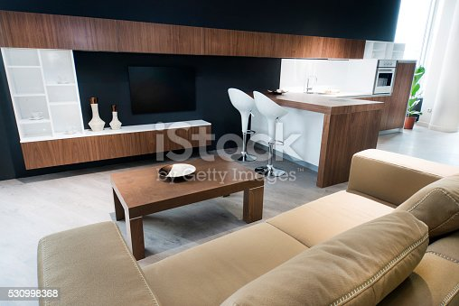 istock Modern Living Room Interior in Luxury Apartment 530998368