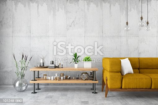 994217090istockphoto Modern Living Room with Sofa and Decor 1012481990