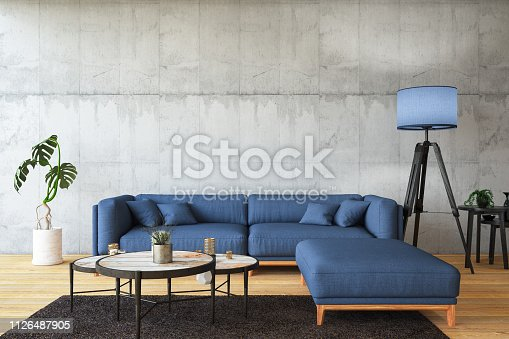 Modern living room interior with sofa