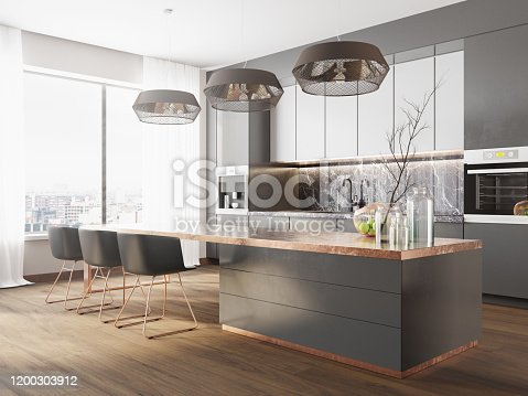 Picture of the large modern luxury kitchen in the city
