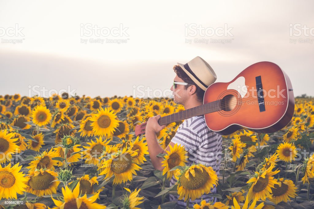 Modern man with acoustic guitar in sunflower field stock photo
