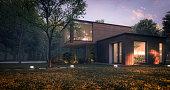 istock Modern Minimalist Family Villa 1256263980