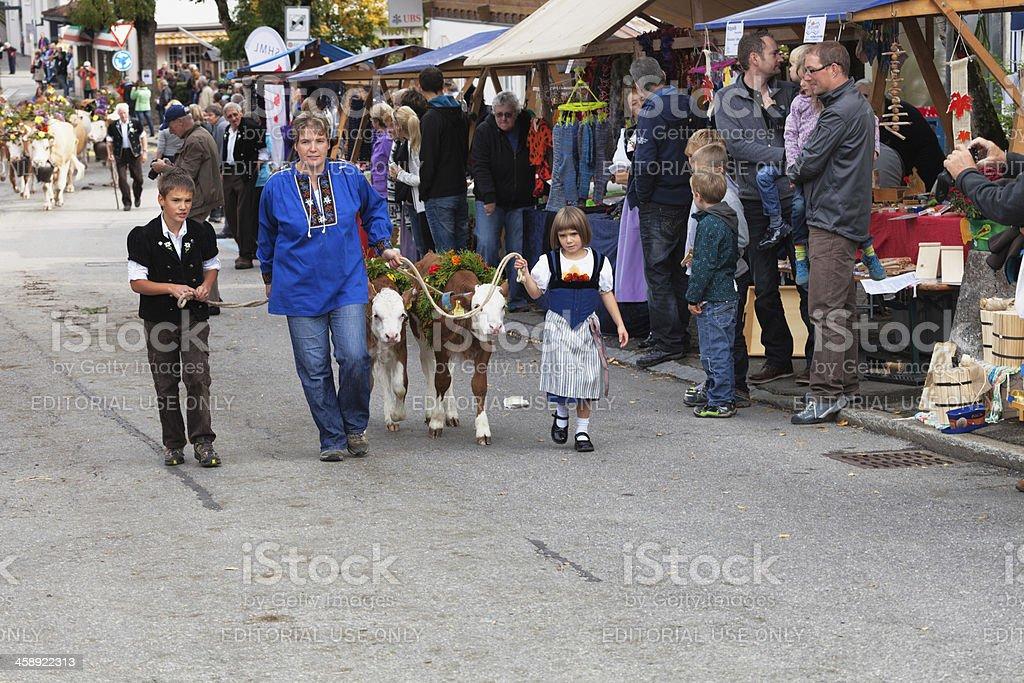 Modern Mother leads her children, two calves in Aelplerfest royalty-free stock photo