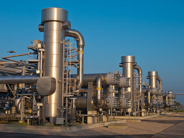 modern natural gas processing plant - wildlife reserve stock pictures, royalty-free photos & images