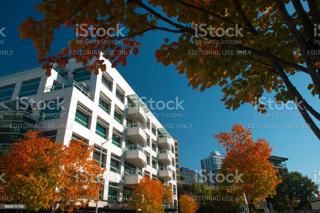 Modern office building by Seattle Center stock photo