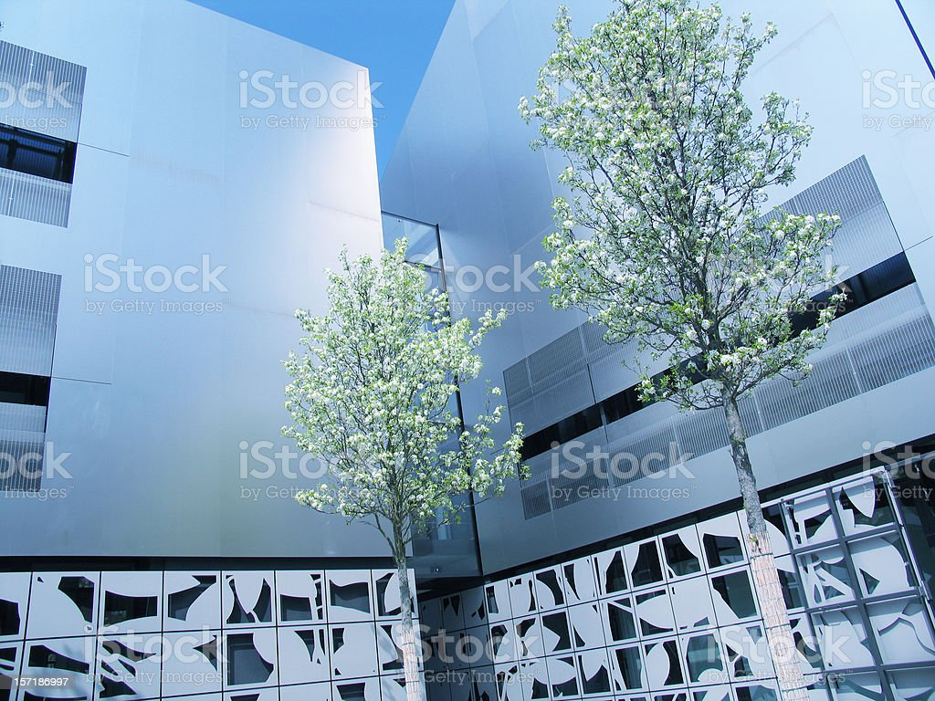 Modern office building front and spring (tree blossom) royalty-free stock photo