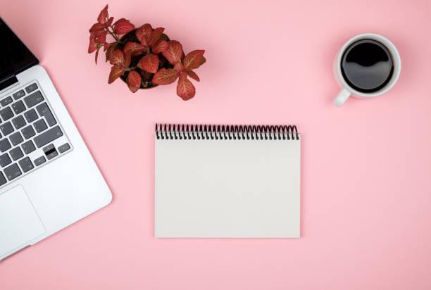 moderner schreibtisch mit computer, leerer notebook-seite und roter anlage. topansicht mit kopierplatz - unterrichtsplanung vorlagen stock-fotos und bilder