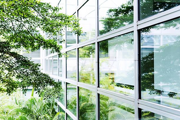 近代的なオフィスの木 - 緑 ビル ストックフォトと画像