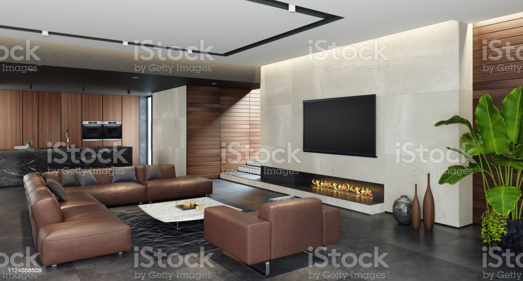 Modern Open Concept Kitchen And Living Room Area With Eco