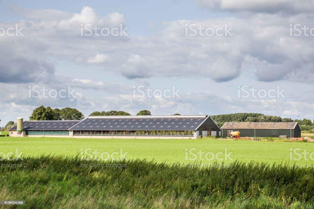 Moderne open Nederlandse boerderij foto